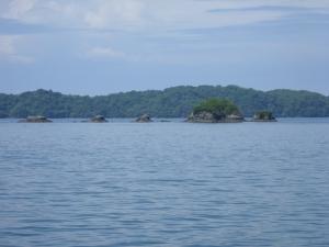NOT Turtuga Island...