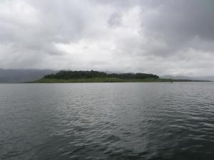 Survivor Island!