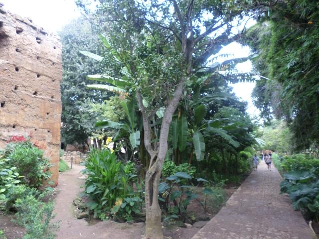 Gardens alongside the ruins