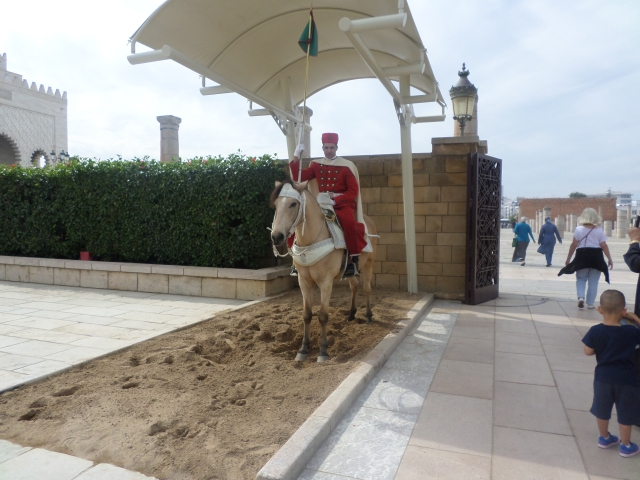 One of two permanent guards in front the Muhammad's tomb